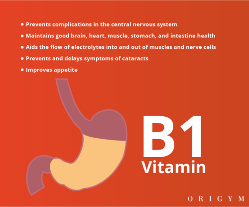 personal trainer meal plan: vitamin b1