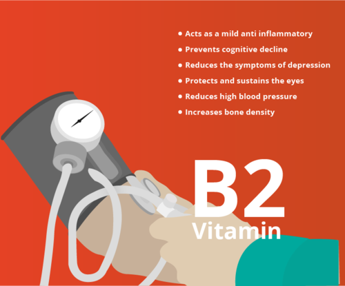 personal trainer meal plan: vitamin b2