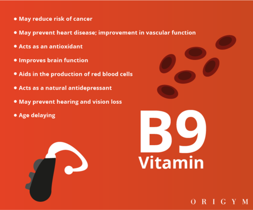 personal trainer meal plan: vitamin b9