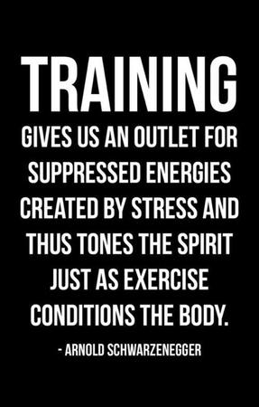 fitness memes: training is an outlet for suppressed energies