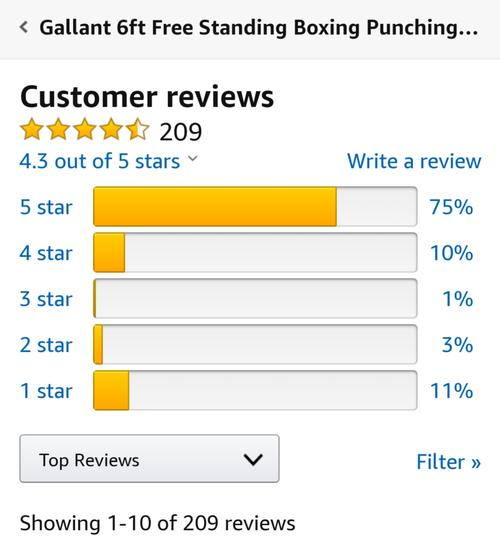 best punching bag: gallant review