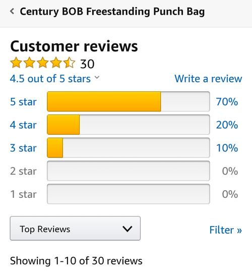 best punching bag: century bob review