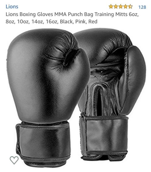 best boxing gloves: lions