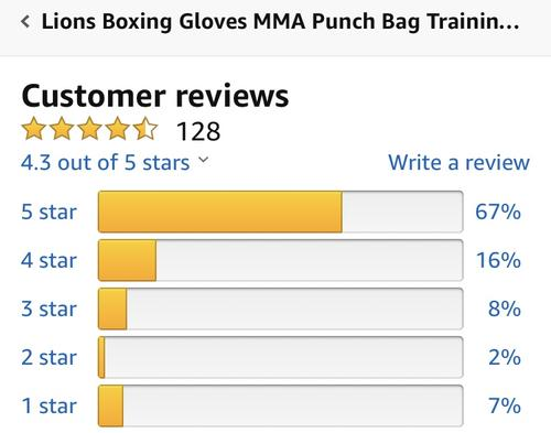 best boxing gloves: lions review