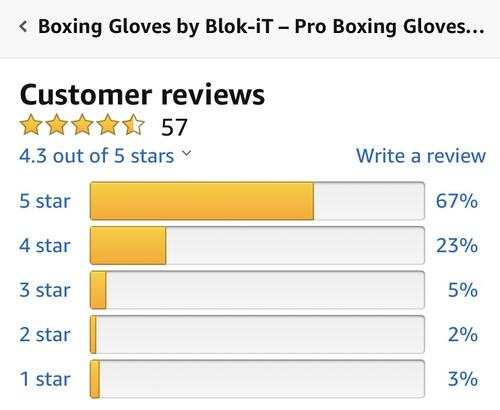 best boxing gloves: blok-it review