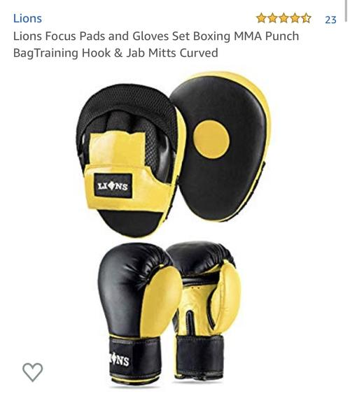 best boxing gloves: lions set