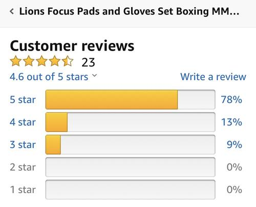 best boxing gloves: lions set review