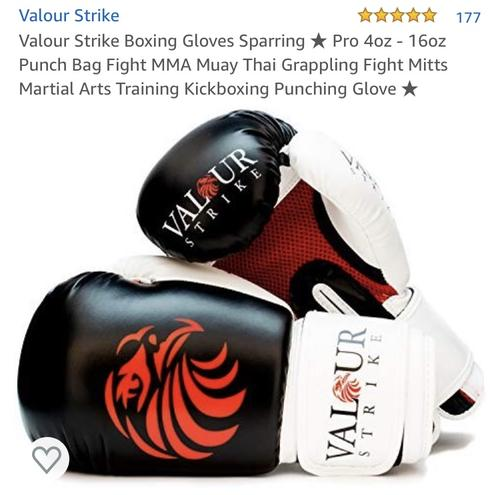 best boxing gloves: valour strike