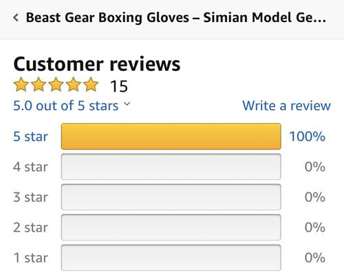 best boxing gloves: beast gear review