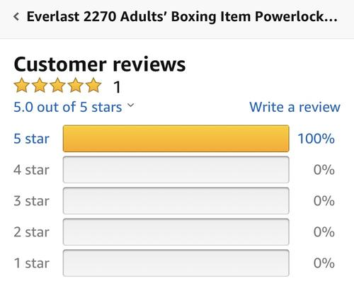 best boxing gloves: everlast review