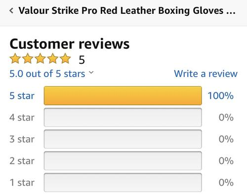 best boxing gloves: valour strike review professional boxing gloves
