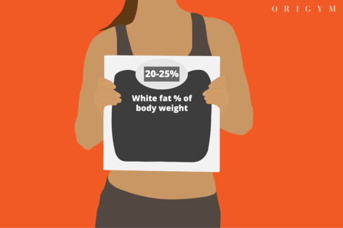 types of body fat: body fat percentage