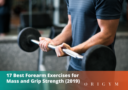 best forearm exercises: header image