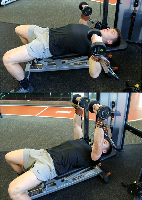 Seated Cable Chest Press with Dumbbells image