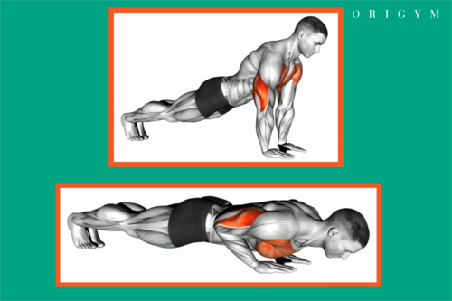starting and finishing position for diamond push up