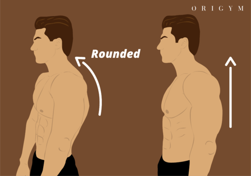 Posture for well balanced shoulders