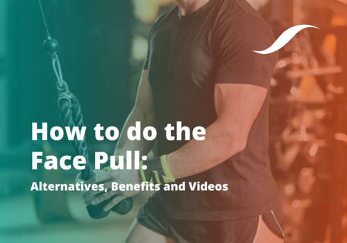 Banner image for Face Pull Exercise