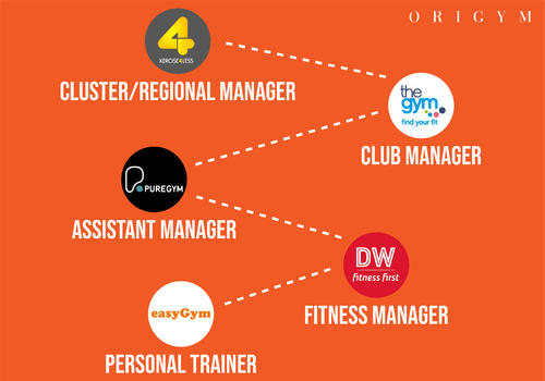 sport and fitness management salary image