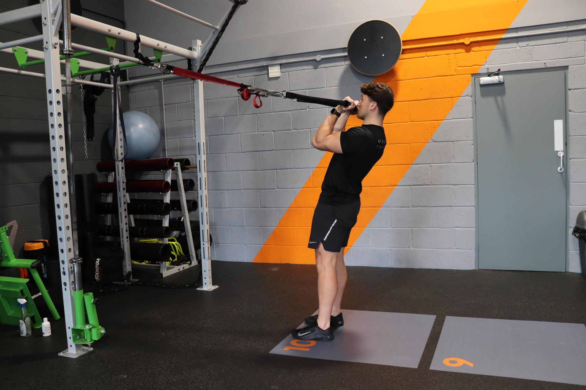 beginners trx exercises image