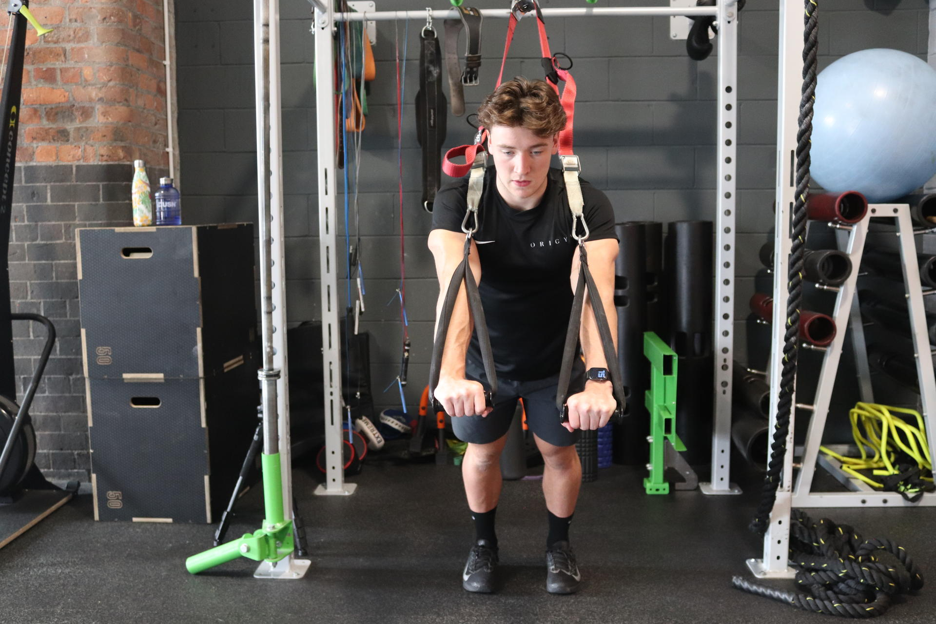 How many trx exercises are there